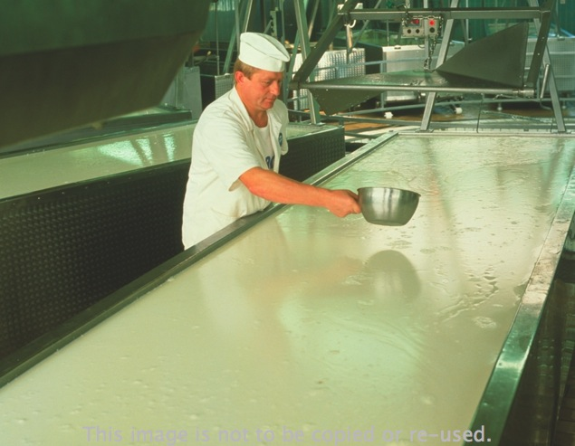 New gcse addl science ocr gateway sb page 16 figure 4 making cheese what is added to milk to speed up the souring reaction ccuart Choice Image